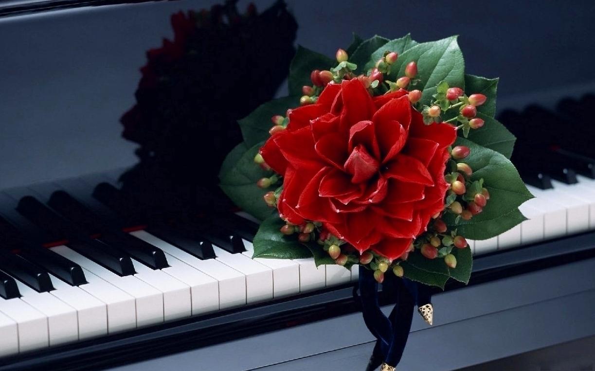 klavishicvetok